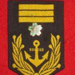 rank_insignia-0018